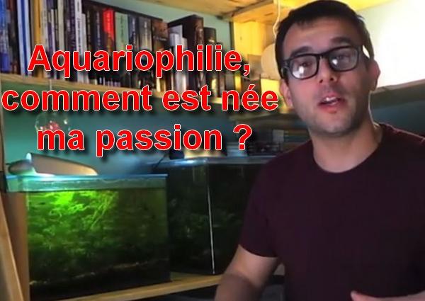 aquariophilie comment est née ma passion