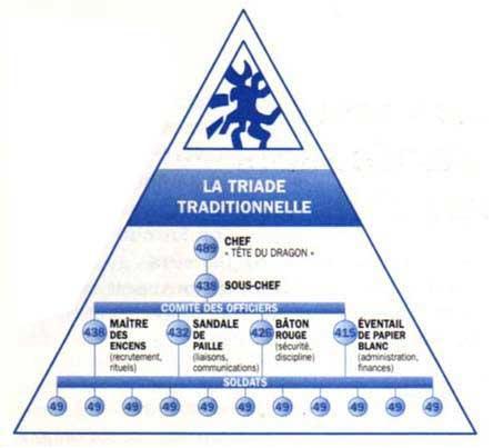 organigramme triade
